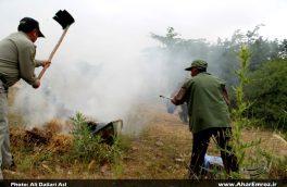 مانور اطفاء حریق جنگلها و مراتع ۵ استان کشور در جنگلهای ارسباران برگزار شد/ عابدی: مانور اطفاء حریق موفقیت آمیز بود