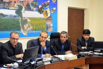 عرضه ۱۰ هزار تن تخم مرغ وارداتی در آذربایجان شرقی