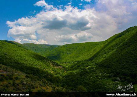 تصویری/ طبیعت زیبای بهاری منطقه ارسباران