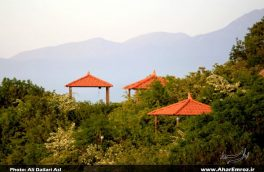 تصویری/ طبیعت بهاری پارک جنگلی فندقلو در اهر