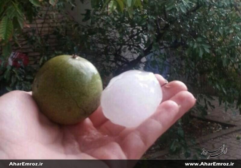 بارش تگرگ به اندازه گردو و سیبزمینی در اهر + تصاویر/ خسارت به محصولات کشاورزی و باغی ۶ روستا
