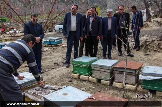 تصویری/ بازدید فرماندار و مسئولین شهرستانی از دو مرکز زنبورداری و تولید عسل