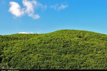 جنگلهای ارسباران ثبت جهانی میشود 